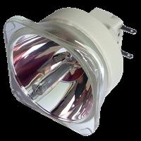 PHILIPS-UHP 245/170W 0.8 E19.4 Lampa fără modul