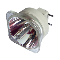 PHILIPS-UHP 330/270W 1.0 E20.9 Lampa fără modul