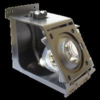 SAMSUNG HL-T5055WX/XAC Lampa cu modul